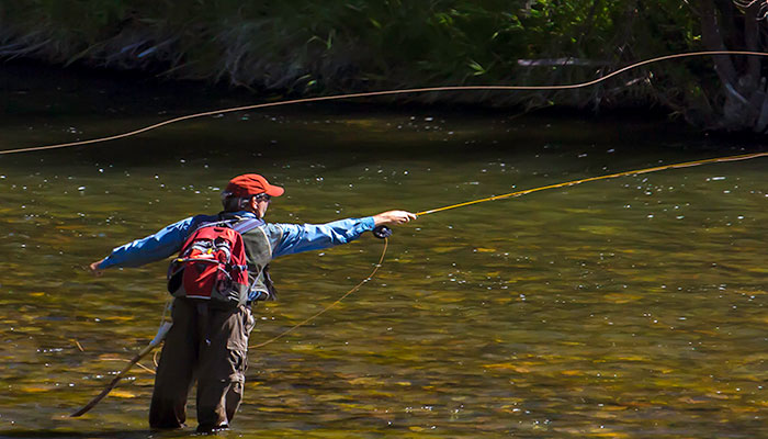 Fly Fishing Lessons Casting Instruction