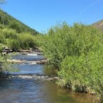 What Did He Say? 7 Fly Fishing Terms Your Guide Will Use on the River