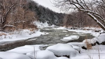 Everything You Need to Know About Winter Fly Fishing in Montana