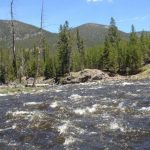 Everything You Need To Know About Boulder River Fly Fishing