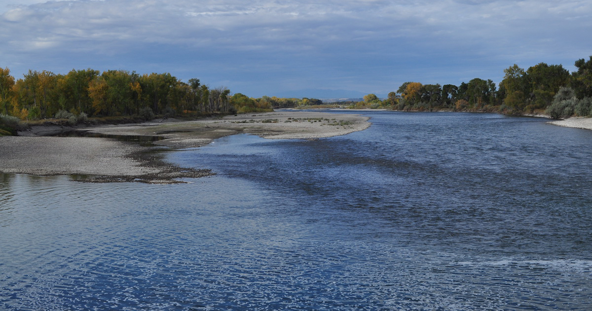 Stillwater Anglers Yellowstone River Fly Fishing