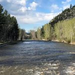 Everything You Need To Know About Stillwater River Fly Fishing