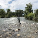 Montana Fishing Report – Everything You Need To Know