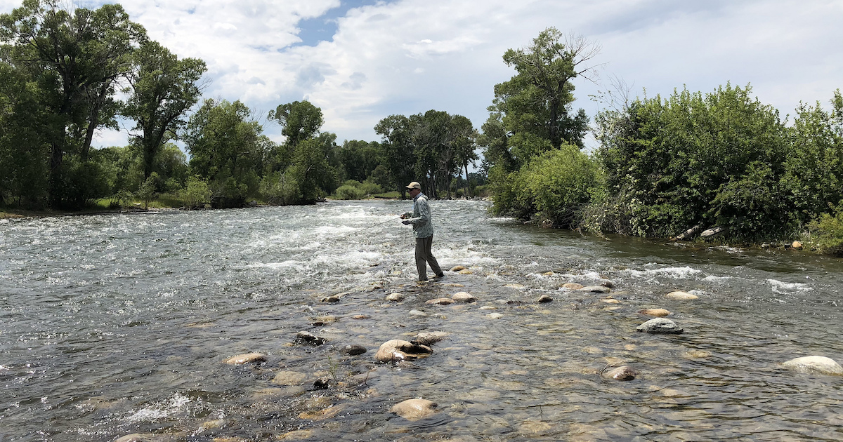 Stillwater Anglers Montana Fishing Report
